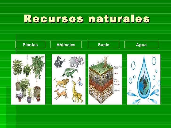 Recursos no renovables: Los recursos naturales no renovables existen en cantidades determinadas, no pueden aumentar con el paso del tiempo. Ejemplos de recursos naturales no renovables son el petróleo, los minerales, los metales y el gas natural.